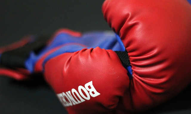 boxing-gloves-390432_640