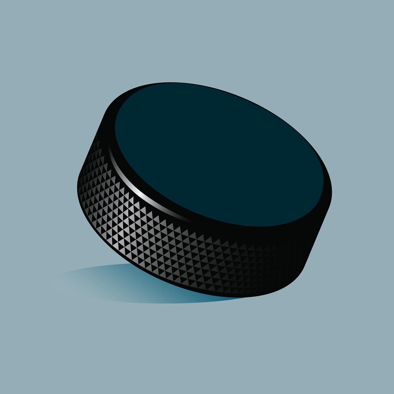 hockey-puck-1477440_1280