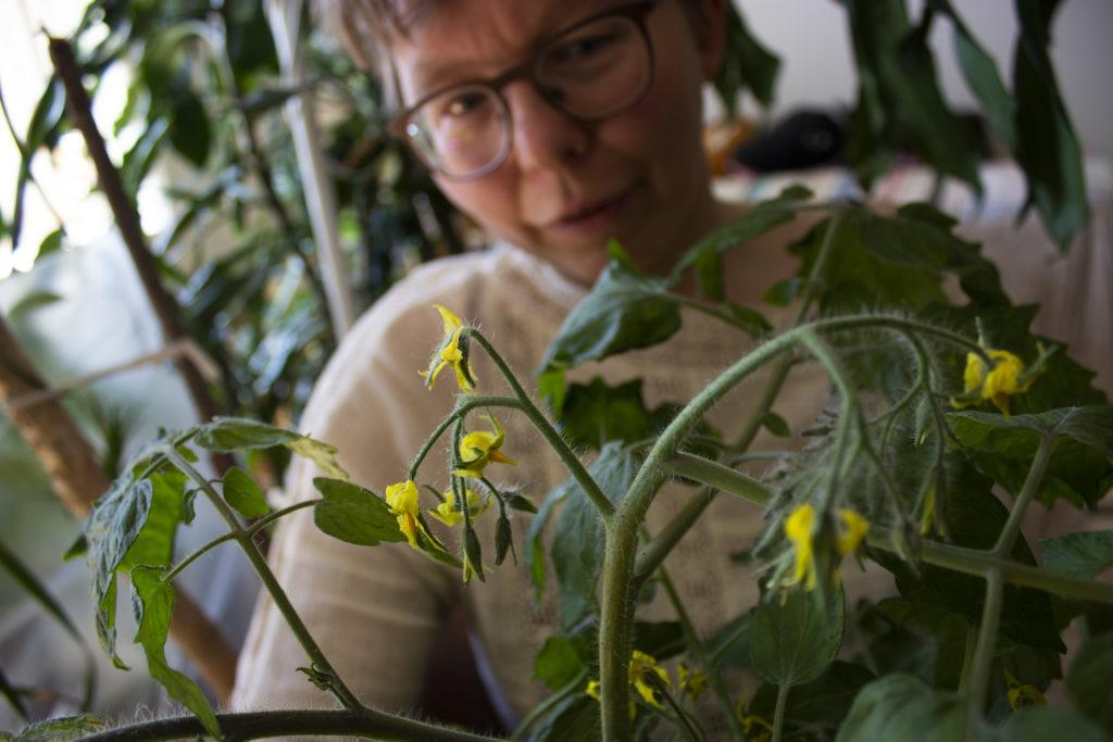 Oululainen Saara Salmela on ollut kiinnostunut kasveista lapsesta saakka.